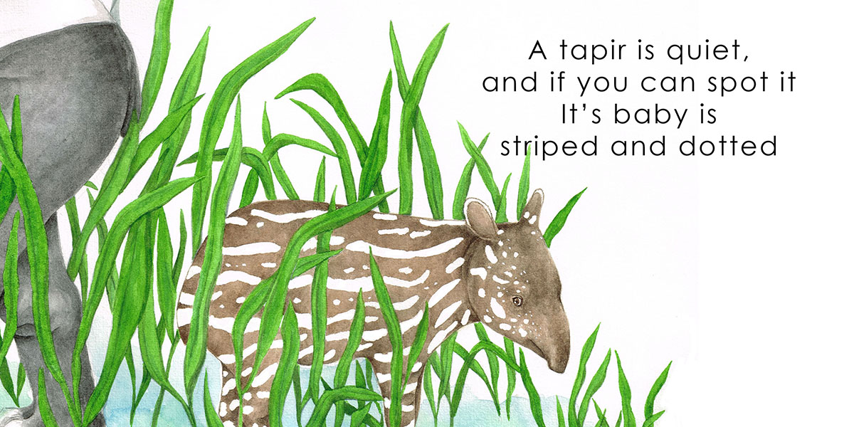 Borneo Animals - Tapir, picture book by Beverley Hon, illustrated by Lim Lay Koon